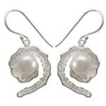 Muschelamonit - Silber Perlenohrringe - poliert