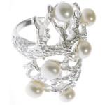 Cestrum - Silber Perlenring - poliert