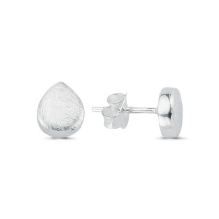 Silberohrstecke - ESA15444