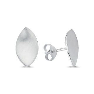 Silberohrstecke - ESA15467