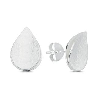 Silberohrstecke - ESA15474